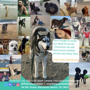 collage of dog pictures